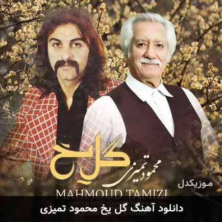 دانلود اهنگ گل یخ محمود تمیزی