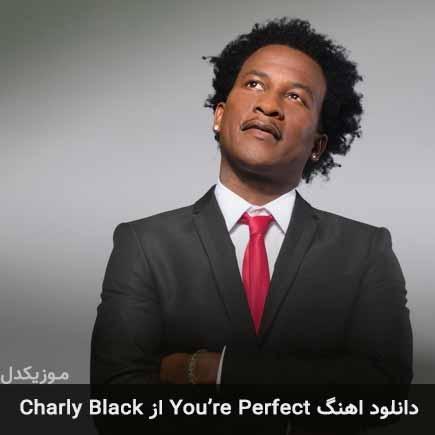 دانلود اهنگ You're Perfect Charly Black