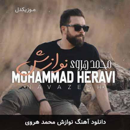 دانلود اهنگ نوازش محمد هروی